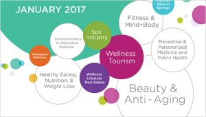2017 Global Wellness Economy Monitor