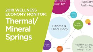 2018 Global Wellness Economy Monitor: Thermal/Mineral Springs Sector