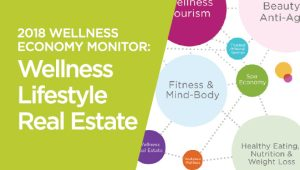 2018 Global Wellness Economy Monitor: Wellness Lifestyle Real Estate Sector