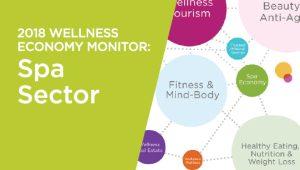 2018 Global Wellness Economy Monitor: Spa Sector