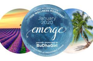 Order Your 2020 Wellness Moonshot Calendar