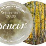 The Moonshot for September: RENEW