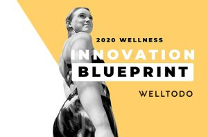 Welltodo Releases Must-Read Report on the Innovation Landscape for 25 Wellness Industry Markets