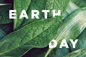 Earth Day 2021: The Wellness-Environment Connection